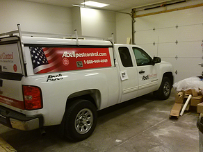 Wholesale vehicle wrap installation Northeast OH